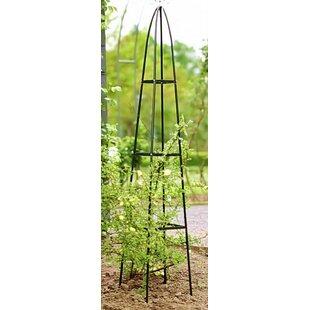 Review Lurdes Metal Obelisk Trellis