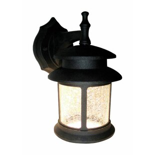 Millwood Pines Faunce LED Outdoor Wall Lantern