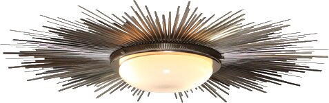 Rohrer 2-Light Sunburst Light Fixture