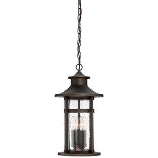 Longshore Tides Mariam 3-Light Outdoor Hanging Lantern