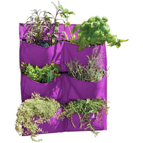 Longbridge Wall Planter Sol 72 Outdoor Colour: Purple