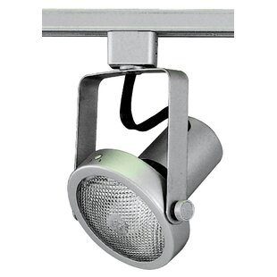 Royal Pacific Gimbal 1-Light 75W l Ring Track Head
