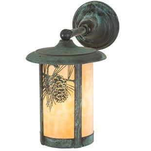 Best Reviews Wyona Winter Pine Outdoor Wall Lantern By Loon Peak