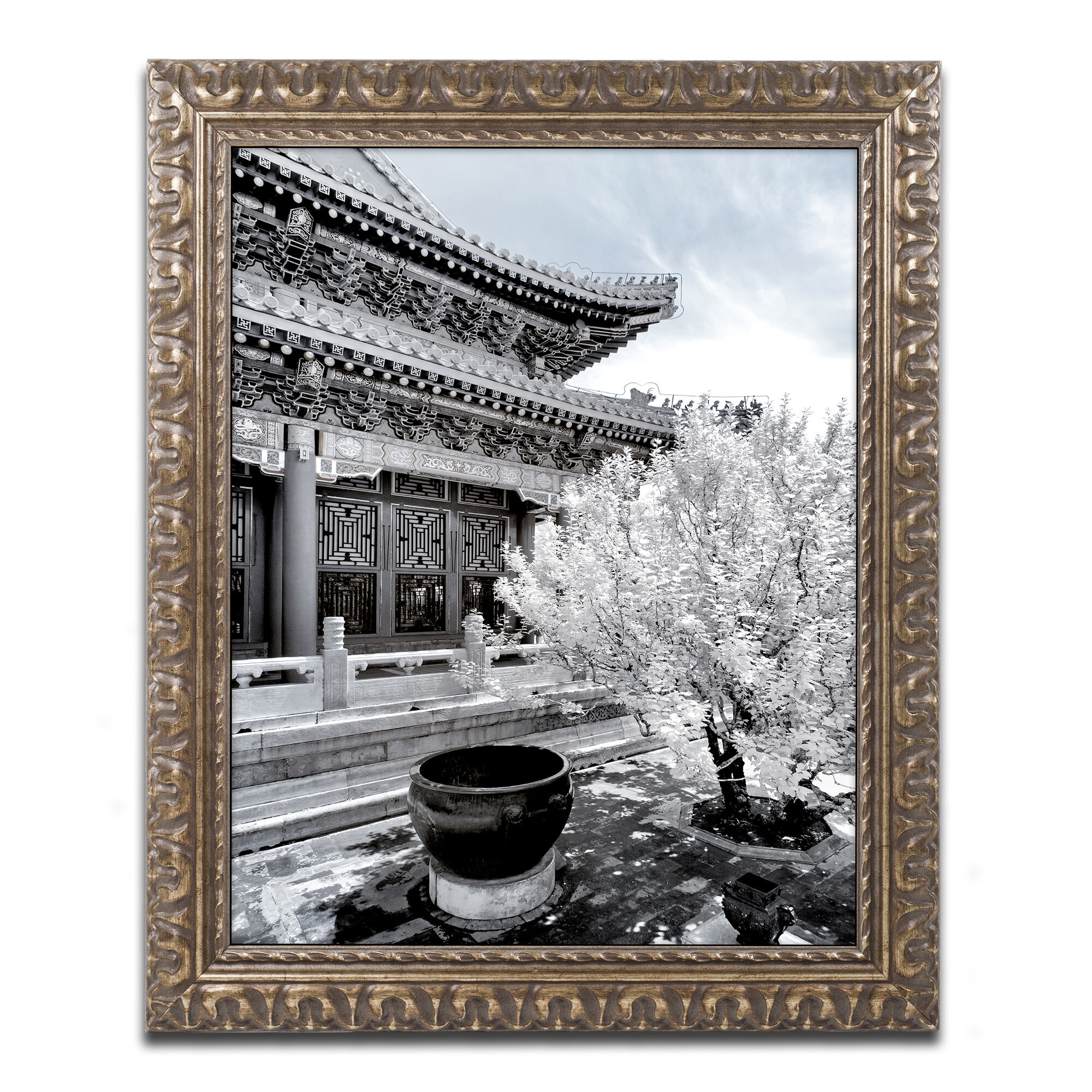 Trademark Art White Temple X By Philippe Hugonnard Framed Photographic Print Wayfair