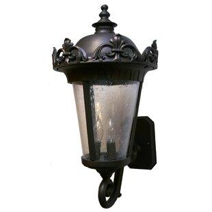 Best Reviews Petrey 3-Light Outdoor Sconce By Alcott Hill