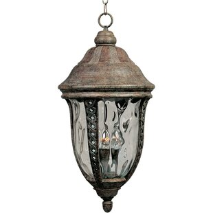 Reviews Ithaca 3-Light Outdoor Hanging Lantern By Astoria Grand