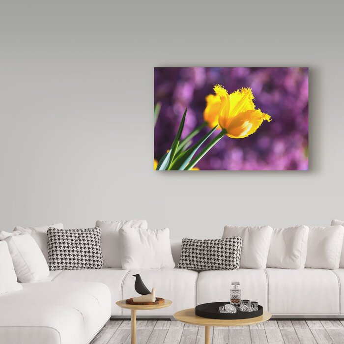 \'Yellow Tulip Soft Purple Background\' Photographic Print on Wrapped Canvas