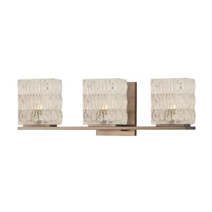 Willa Arlo Interiors Waymon 3-Light Vanity Light