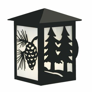 Inexpensive Twin Tree 1-Light Outdoor Sconce By Steel Partners