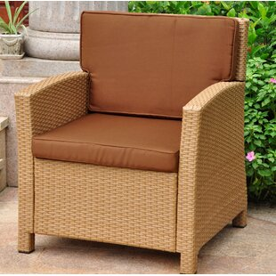 Stapleton Wicker Resin Contemporary Patio Chair with Cushion