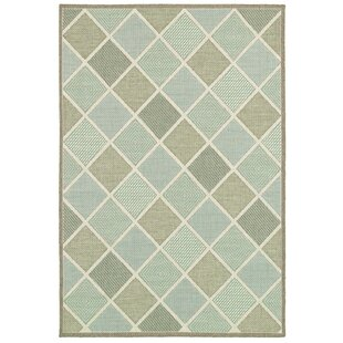 Seidenberg Green Indoor/Outdoor Area Rug