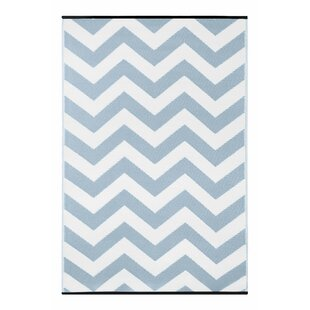 Light Blue/White Indoor/Outdoor Area Rug
