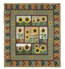Patch Magic Sun Burst Quilt