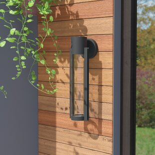 Erick Outdoor Sconce