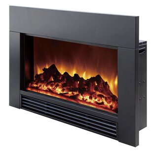 https://secure.img1-fg.wfcdn.com/im/74554704/resize-h310-w310%5Ecompr-r85/9622/9622125/electric-fireplace-insert.jpg
