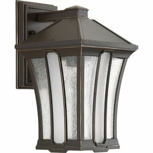 Loon Peak Cerre 1-Light Outdoor Wall Lantern