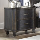 Tamsin 2 - Drawer Solid Wood Nightstand in Black by Canora Grey