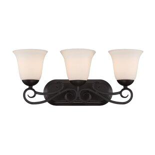 Gormley 3-Light Vanity Light by Fleur De Lis Living