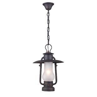 Longshore Tides Burks 1-Light Outdoor Hanging Lantern