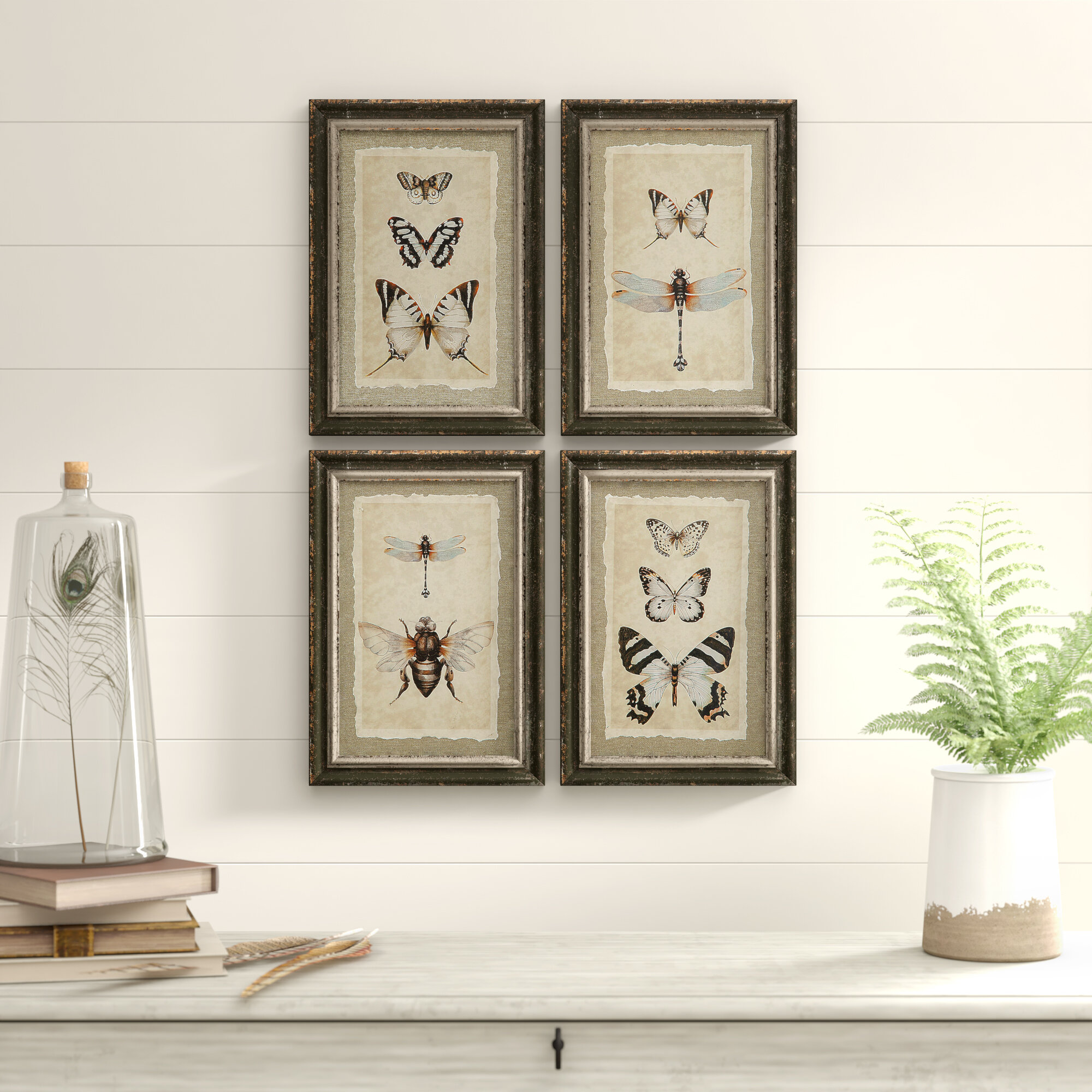 Birch Lane Wood Framed Vintage Insect Prints 4 Piece Picture Frame Print Set On Wood Reviews Wayfair