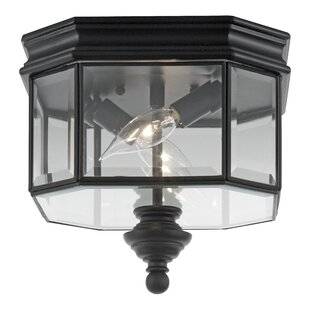 Darby Home Co Burrell 2-Lights Outdoor Flush Mount