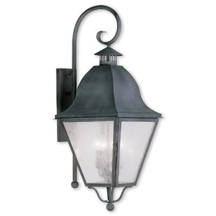 Goodhue 4-Light Outdoor Wall Lantern by A..