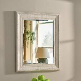Vice Accent Mirror By House of Hampton