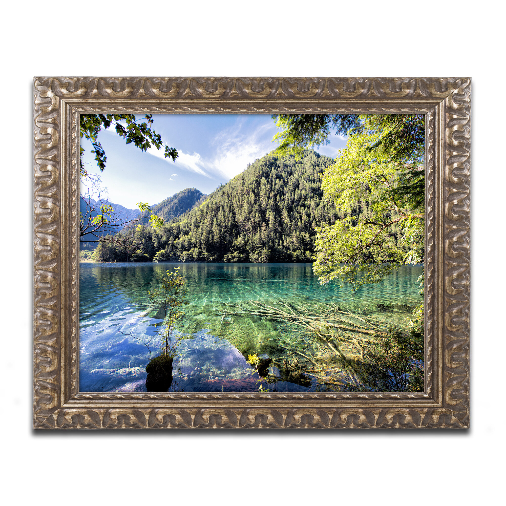 Trademark Art Tiger Lake By Philippe Hugonnard Framed Photographic Print Wayfair