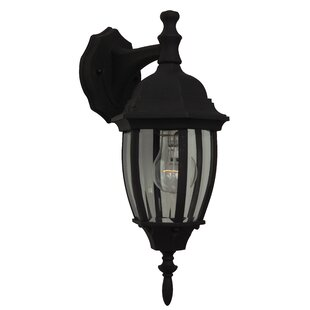 Order Oakhill 1-Light Traditional Outdoor Wall Lantern By Charlton Home
