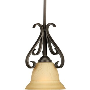Lilly 1-Light Cone Pendant..