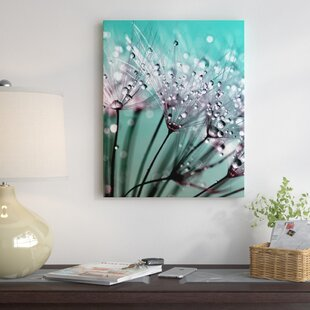 Elegant Dandelion Flower With Water Drops Graphic Art On Wrapped Canvas
