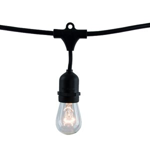 15 Light Globe String Lights