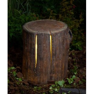 Hymel Woodland Tree Stump 1 Light Decorative And Accent Light By Sol 72 Outdoor