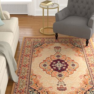 Neil Traditional Beige Indoor/Outdoor Area Rug