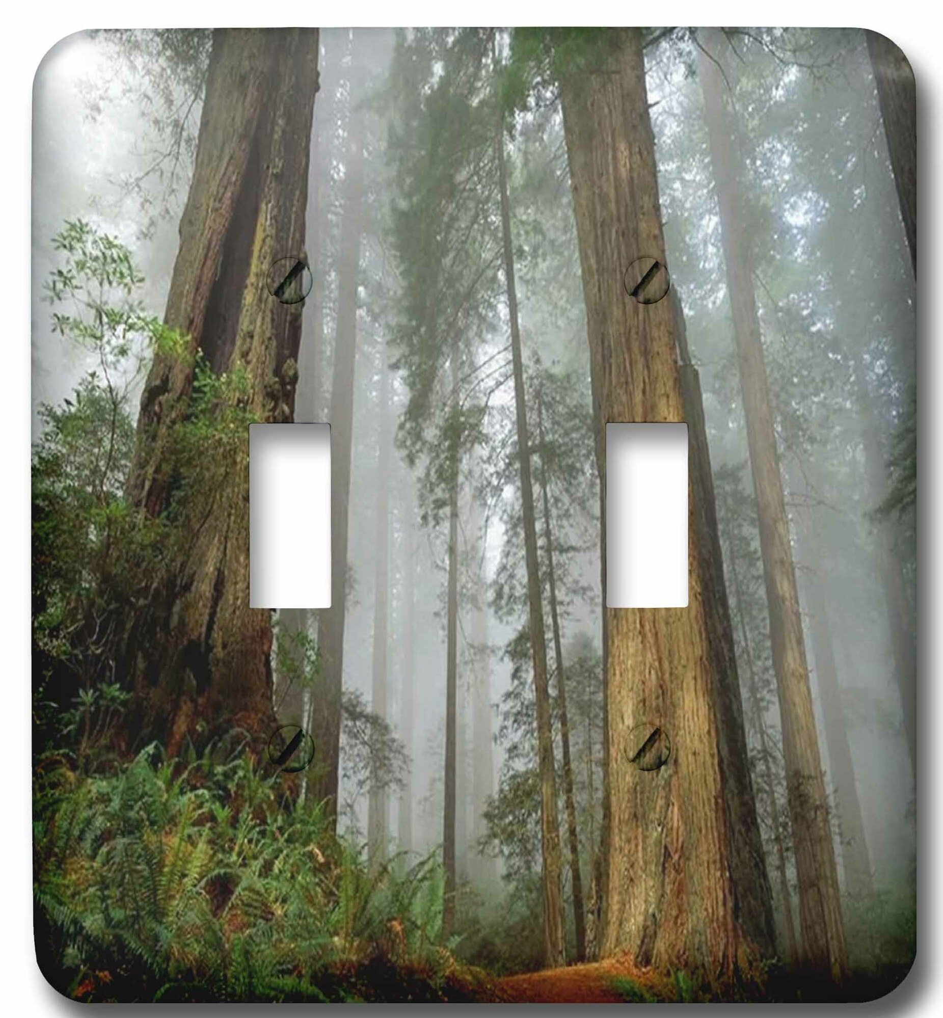 3drose Mist In The Forest 2 Gang Toggle Light Switch Wall Plate Wayfair