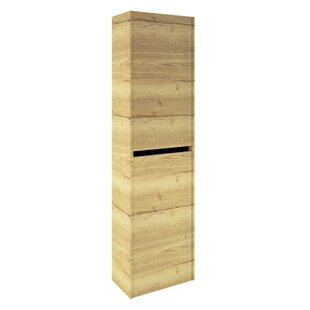 Review Mcelfresh 45 X 165cm Corner Wall Mounted Cabinet