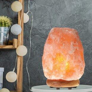 Bungalow Rose Aliana Salt Lamp (Set of 2)