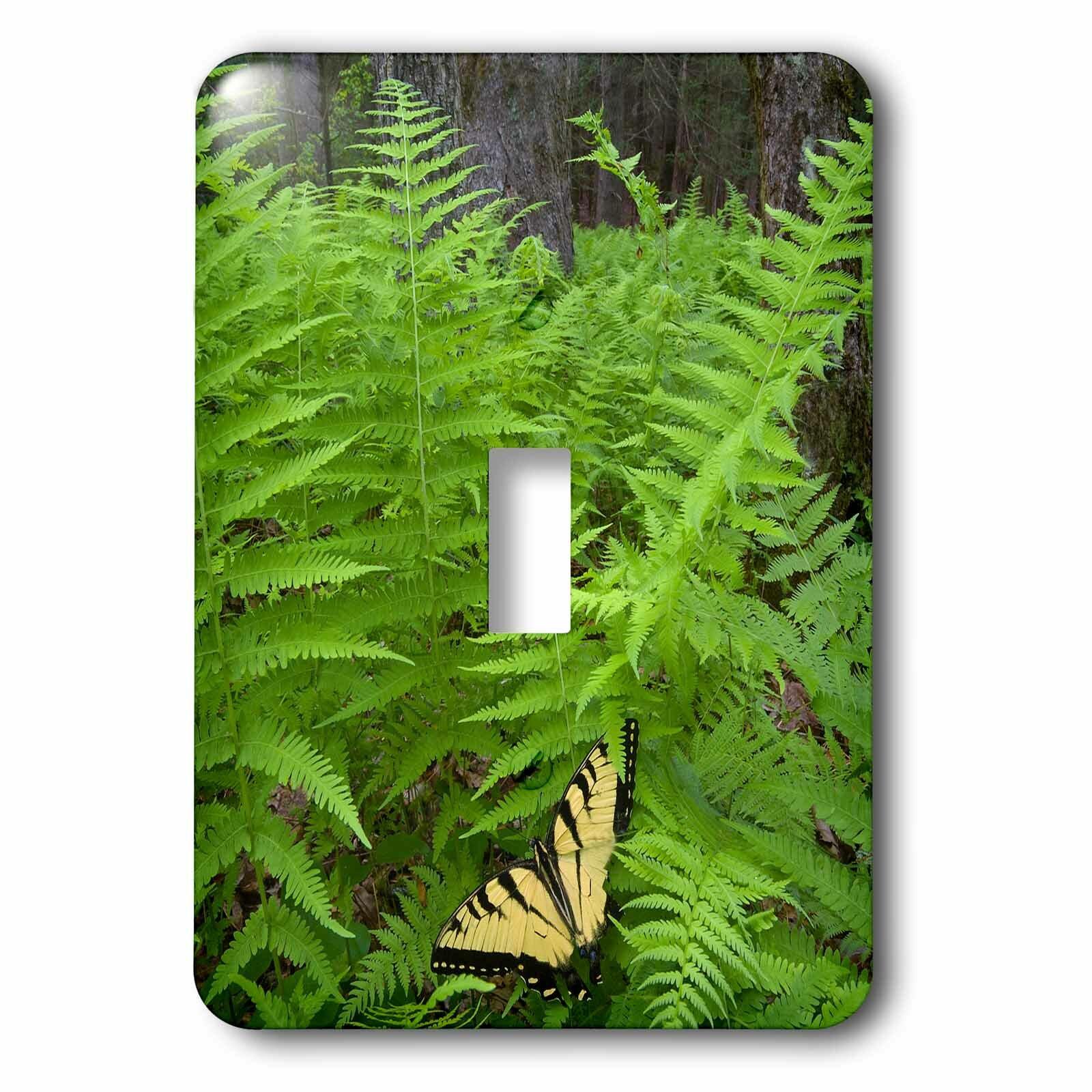 3drose Swallowtail Butterfly On Fern 1 Gang Toggle Light Switch Wall Plate Wayfair