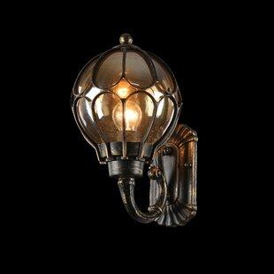 Albaugh Outdoor Wall Lantern By Astoria Grand