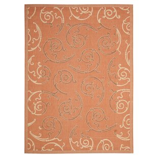 Octavius Terracotta/Cream Indoor/Outdoor Rug