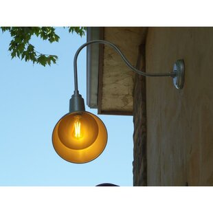 Alvarado Wall Mounted Outdoor Barn Light