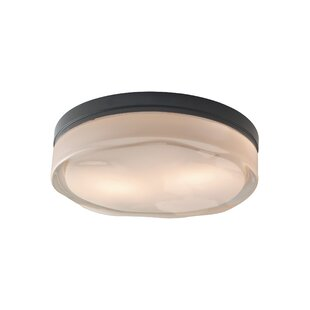 Tech Lighting Fluid 2-Light LED Flush Mount