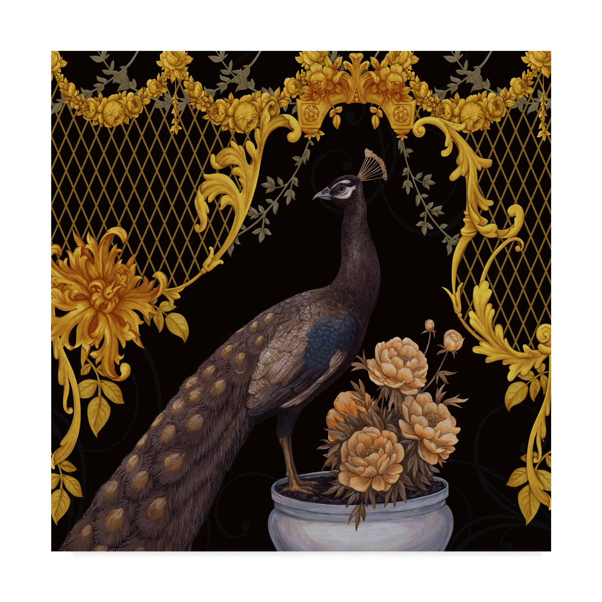 Trademark Art Black Peacock Graphic Art Print On Wrapped Canvas Wayfair
