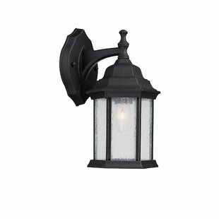 Top Hearne 1-Light Outdoor Wall Lantern By Darby Home Co