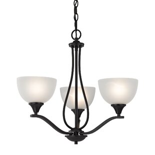 Darby Home Co Gallimore 3-Light Shaded Chandelier