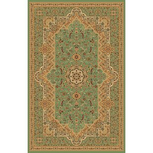 Reviews Mona Lisa Green Area Rug By Rug Factory Plus
