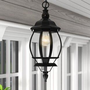 Reva 1-Light Outdoor Hanging Lantern by Fleur De Lis Living