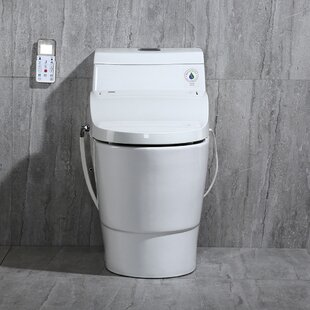 WoodBridge Dual-Flush Elongated One-Piece Toilet With Bidet Seat