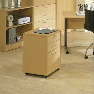 Rebrilliant Ellzey 3-Drawer Mobile Vertical Filing Cabinet