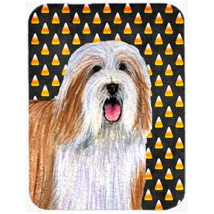 Halloween Candy Corn Bearded Collie Portrait Glass Cutting Board